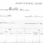 Albert Borella's lease for land in the Daly River region